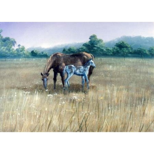 8868 HORSE AND COLT
